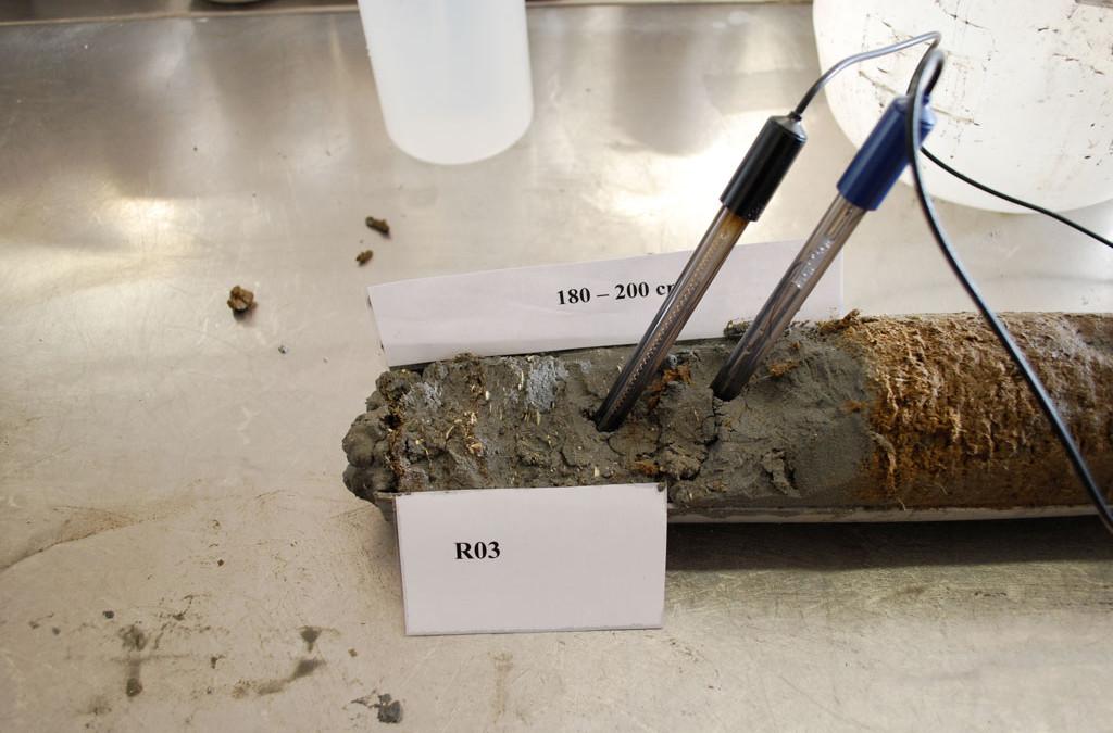 Monitoraggio della qualità delle acque e dei sedimenti